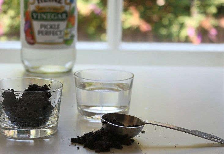 homemade-test-for-soil-ph-vinegar-gardenista