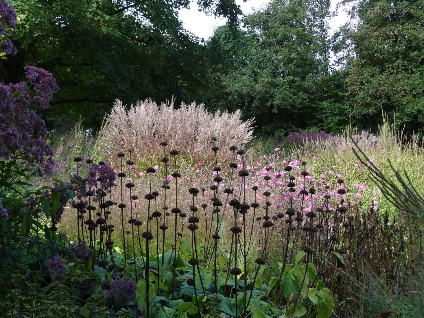 In Hamm, Germany, garden designer Piet Oudolf&#8