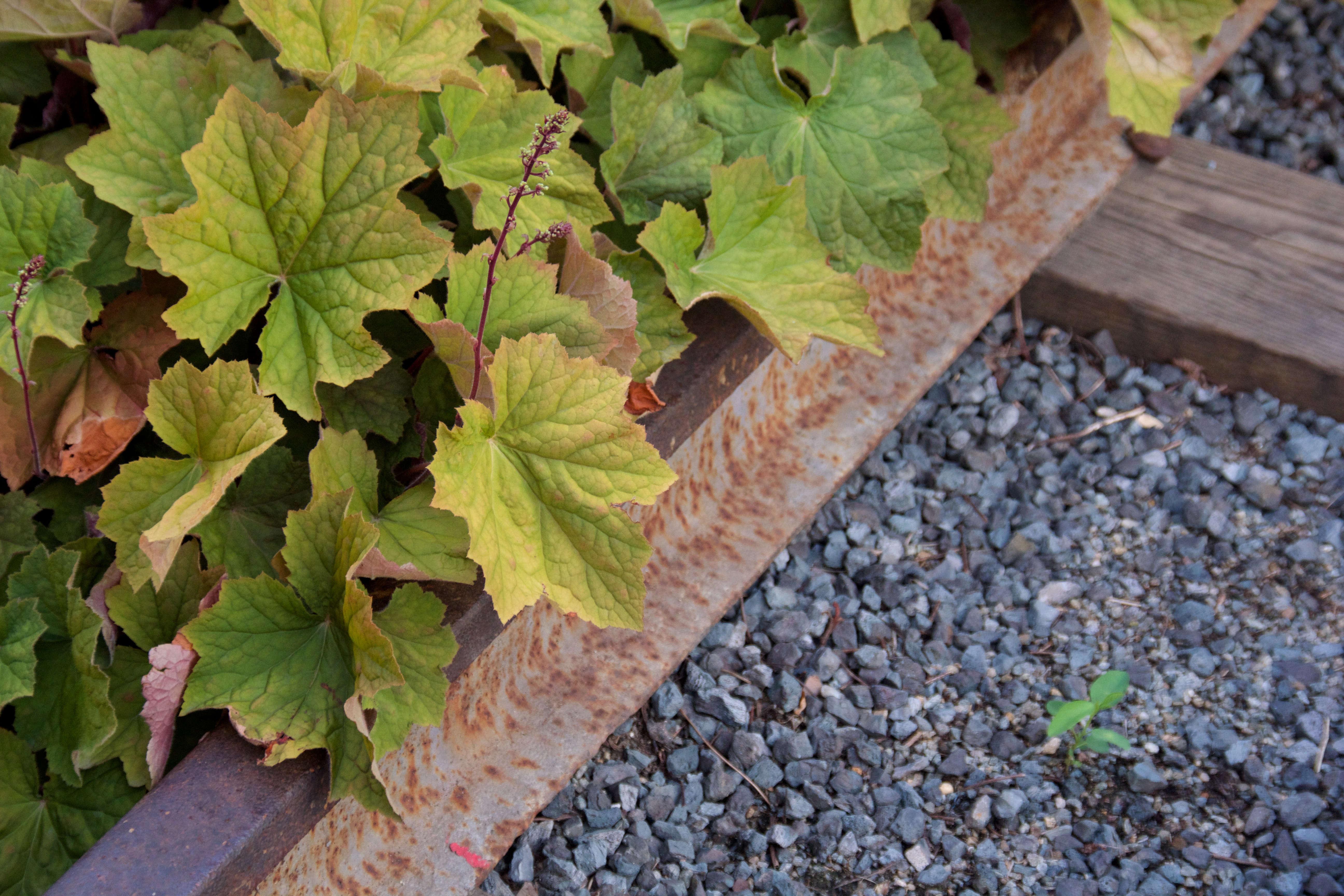 high-line-gravel-rusted-metal-tracks-mike-peel-wikimedia