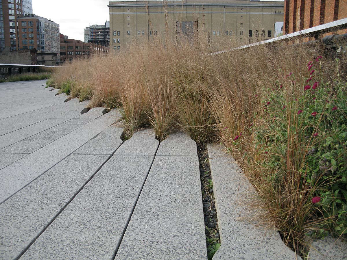 high-line-park-grasses-paths-angelune-des-lauriers-wikimedia