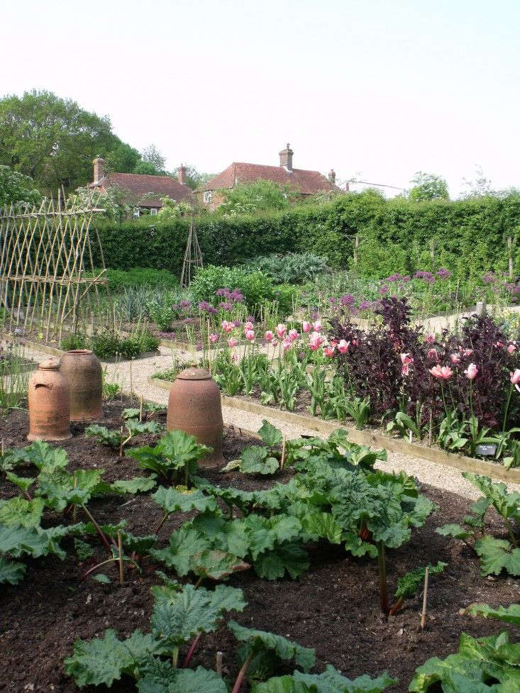 For more of this garden, see Ask the Expert: Sarah Raven&#8