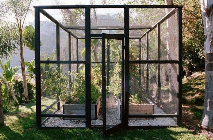 In Hollywood's hills, garden designer Lauri Kranz of Edible Gardens LA conceived a chic enclosure more reminiscent of an Apple store than of deer fencing. For more, see Steal This Look: A Deer-Proof Garden in Hollywood Hills.