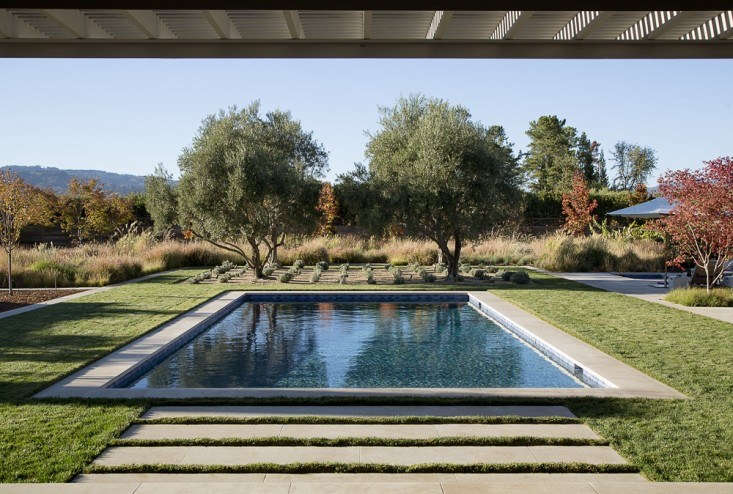 Landscape architect Scott Lewis won an American Society of Landscape Architects Honor Award for the transformation of a one-acre Napa Valley property.In the process, an existing swimming pool got a facelift: it was re-plastered (with plaster that has a gray tint to make the color of the water more reflective) and the coping is limestone.Photograph by Matthew Millman courtesy of Scott Lewis.