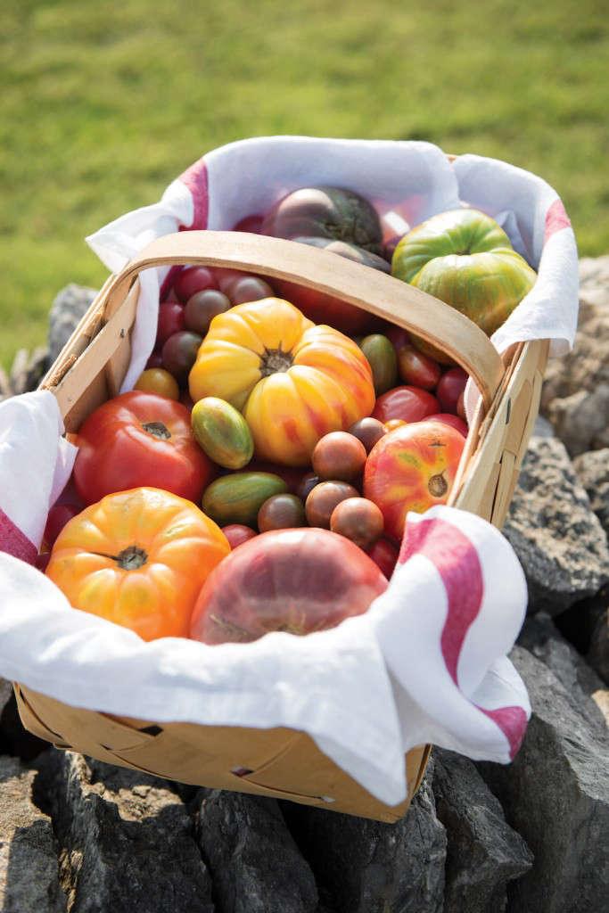 tomato-tomatoes-Julia-Reeds-South-Rizzoli-Gardenista-4-683x1024
