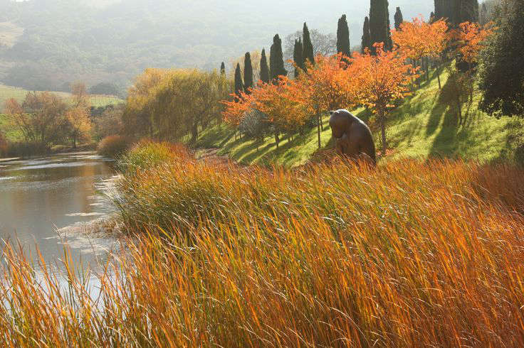 autumn-colors-at-mcevoy-ranch-gardenista