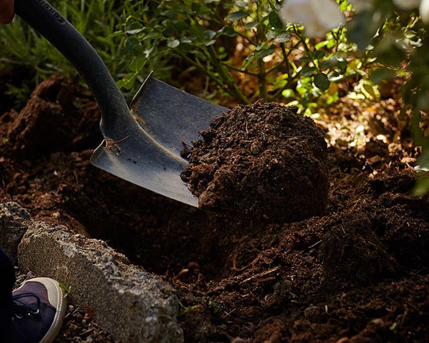 dig hole in garden for fall bulbs