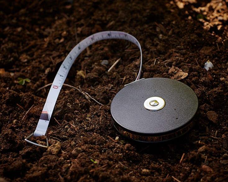 tape measure in garden