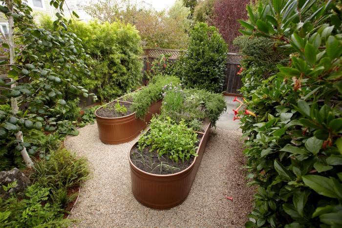 Two galvanized water troughs transformed into raised beds are set ingravel for drainage. Photograph by Marla Aufmuth for Gardenista.