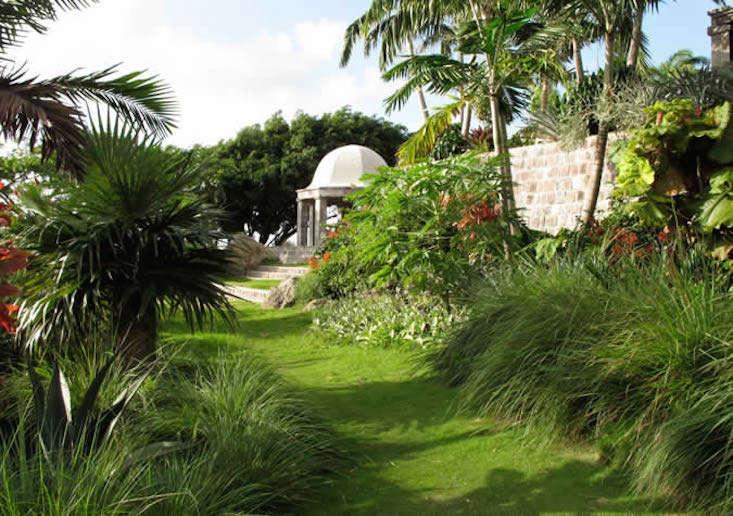 golden-rock-nevis-gardens-2-gardenista