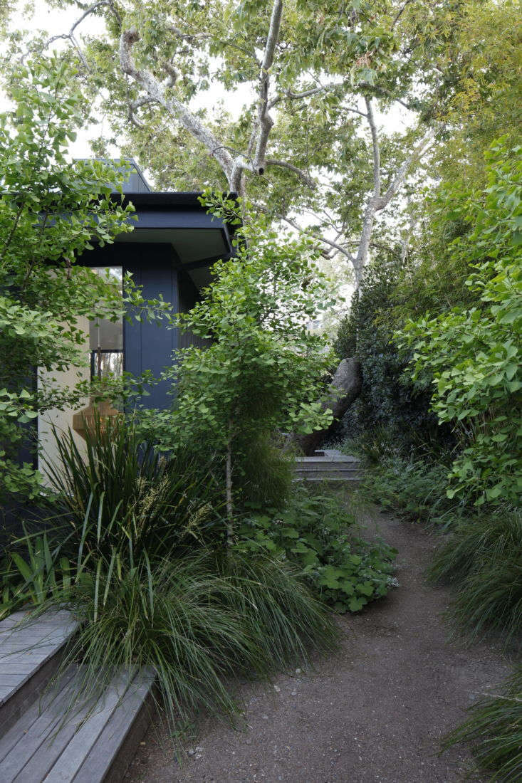 Photograph by Art Gray. For more of this garden, see Landscape Architect Visit: A Majestic Sycamore in a Santa Monica Garden.