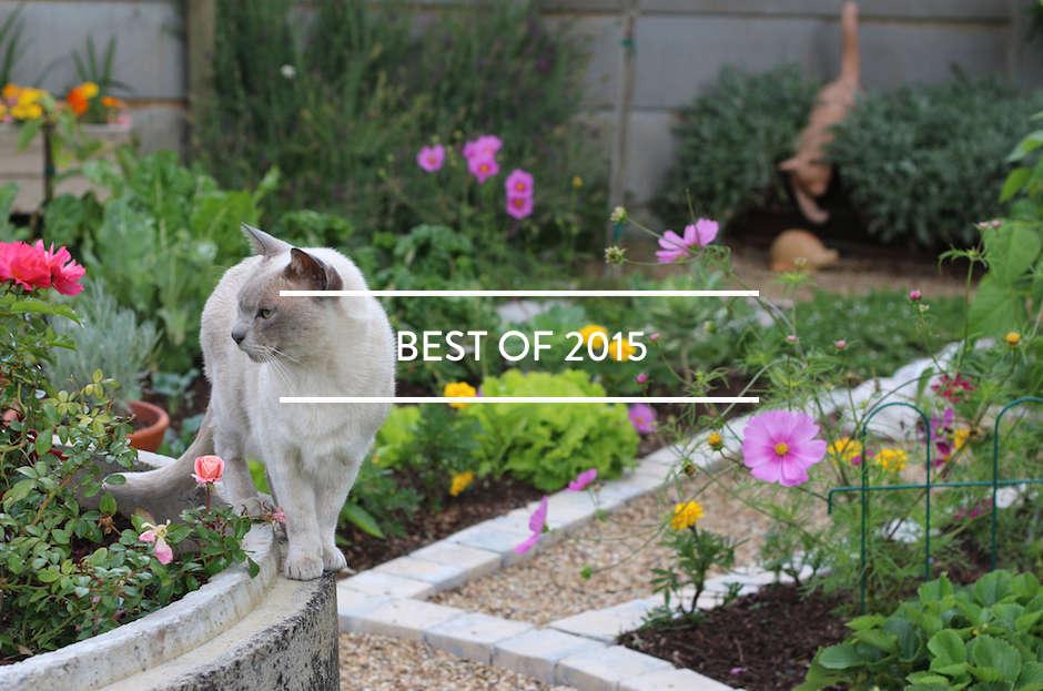 toc-best-of-2015-gardenista