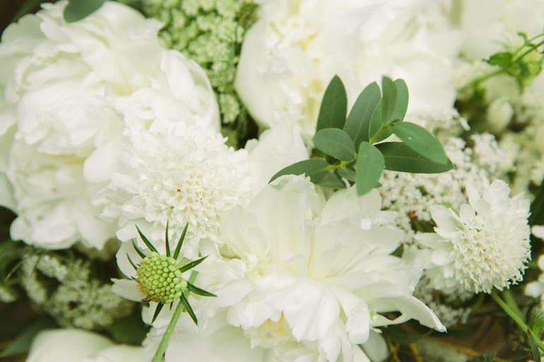 vervain-nursery-peonies-scabiosa-gardenista