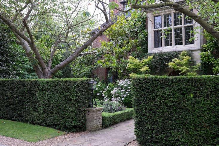 Judy-Green-London-garden-Daphne-Walker-gardenista-733x489