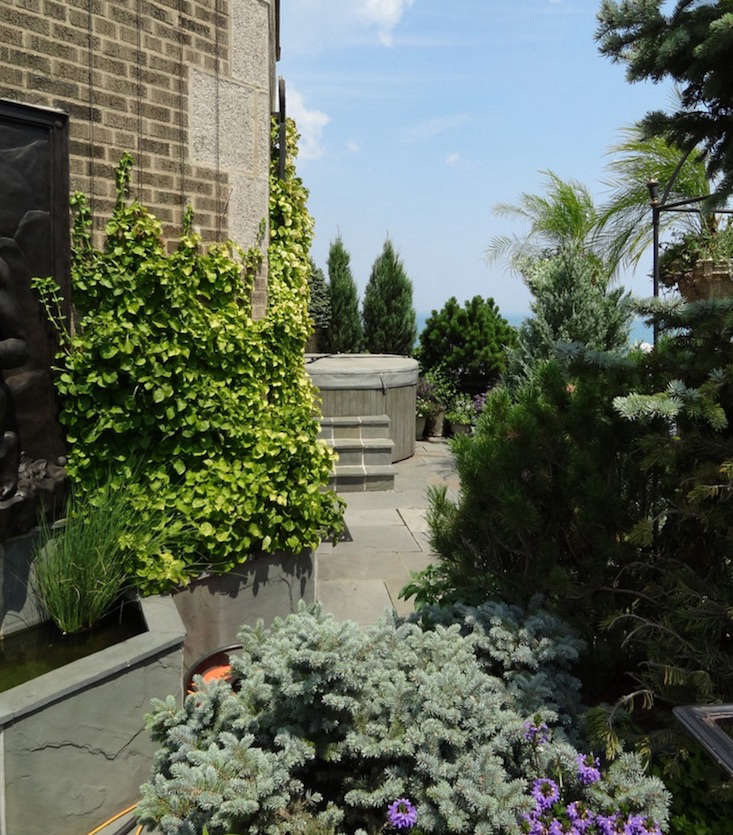 Topiary-fine-gardening-board-gardenista