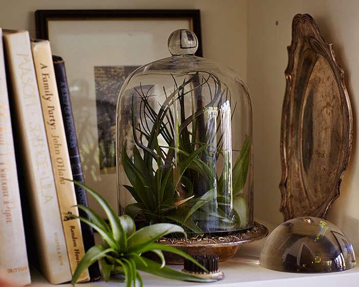 Photograph by John Merkl for Gardenista.
