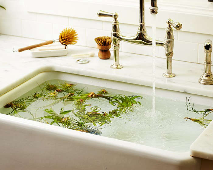 If you have a lot of air plants, fill your sink with water and let them go for a swim.
