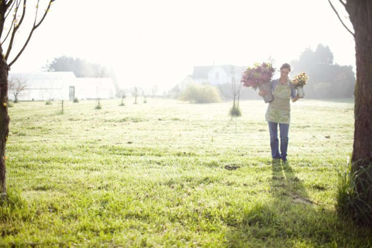 erin-benzakein-floret-flower-farm-gardenista