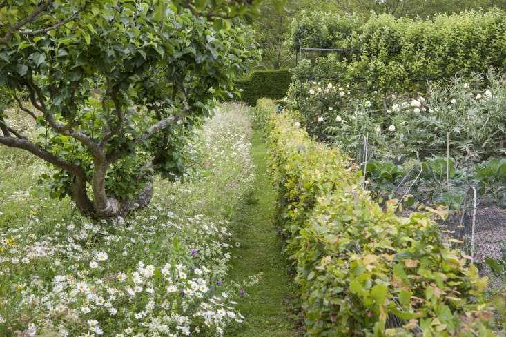 mown-paths-gardenista