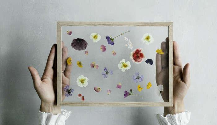 DIY pressed flowers art frame Moebe Copenhagen; Gardenista