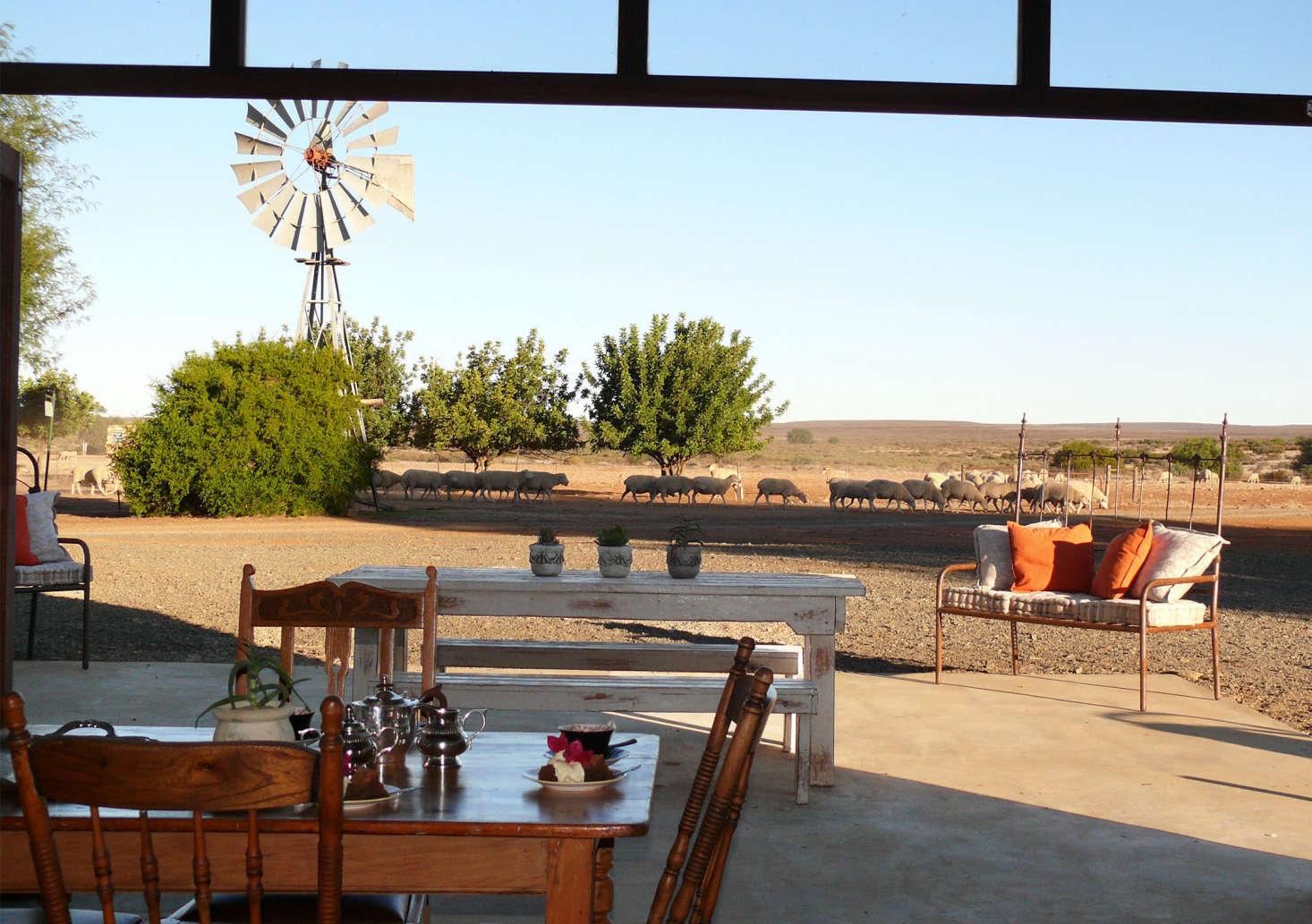 restaurant_papkuilsfontein stock