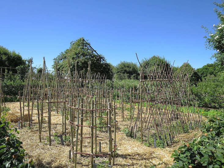 teepees_marie viljoen-babylonstoren-gardenista