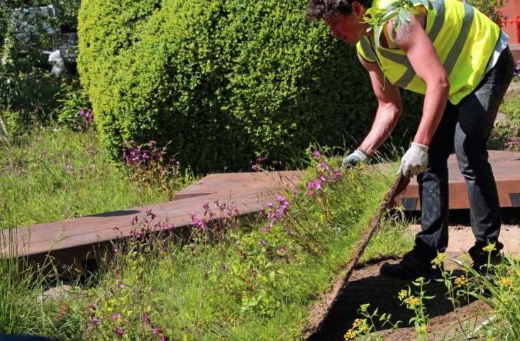 turf-to-order-gardenista