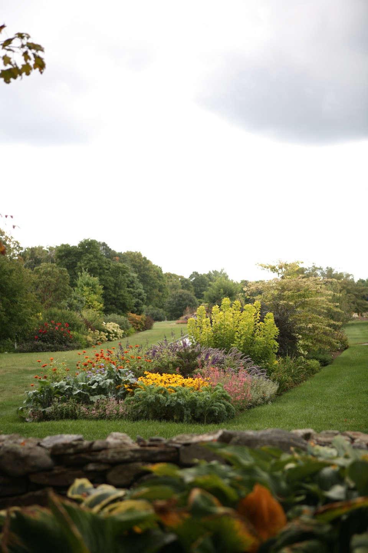 white-flower-farm-trial-garden-border-euphorbia-gardenista.JPG