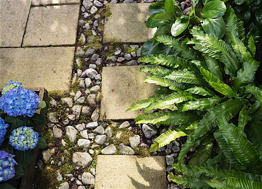 In the path to the back of our garden, we have mixed stones with pavers.