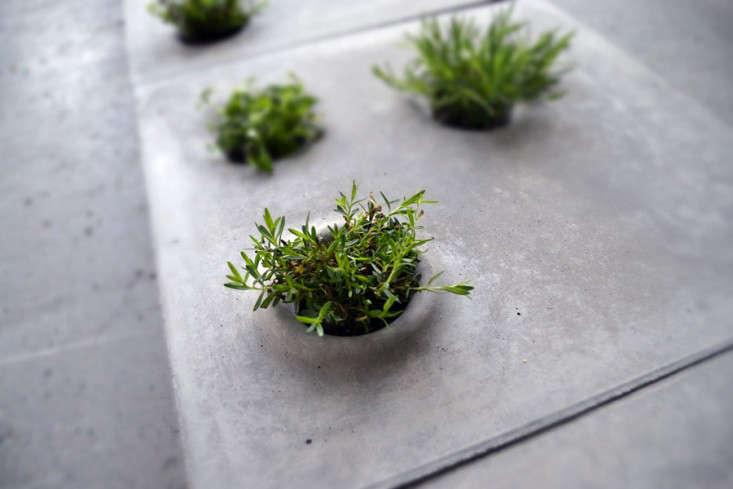 concrete-pavers-planters-caroline-brahme-1-gardenista