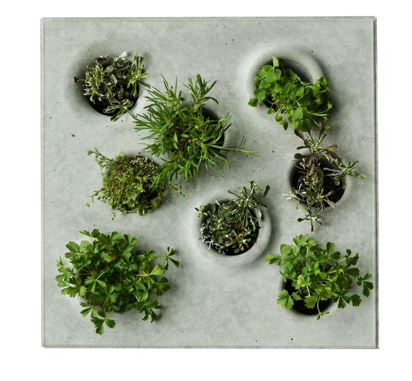 concrete-pavers-planters-caroline-brahme-4-gardenista