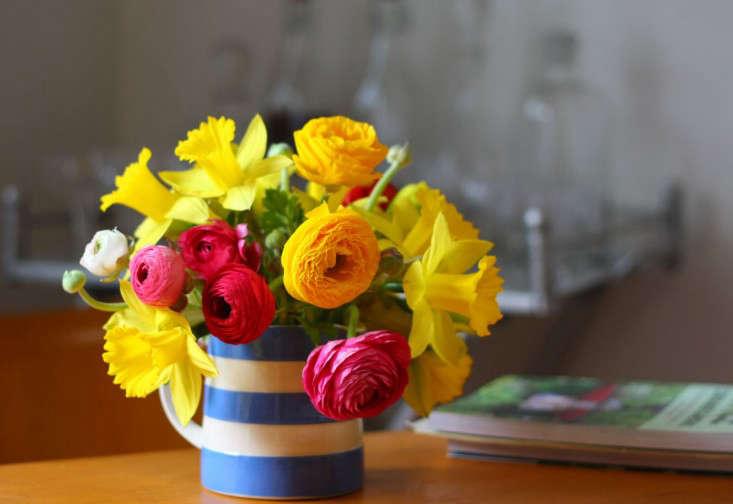 daffodils_ranunculus_marie viljoen_gardenista