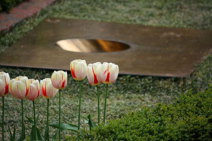 garden-sculpture-tulips-marie-viljoen-gardenista