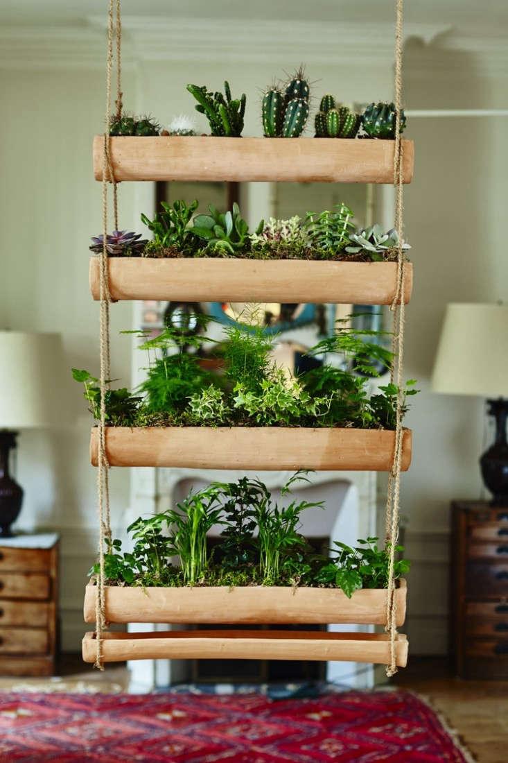 hanging-planter-botany-folk-gardenista