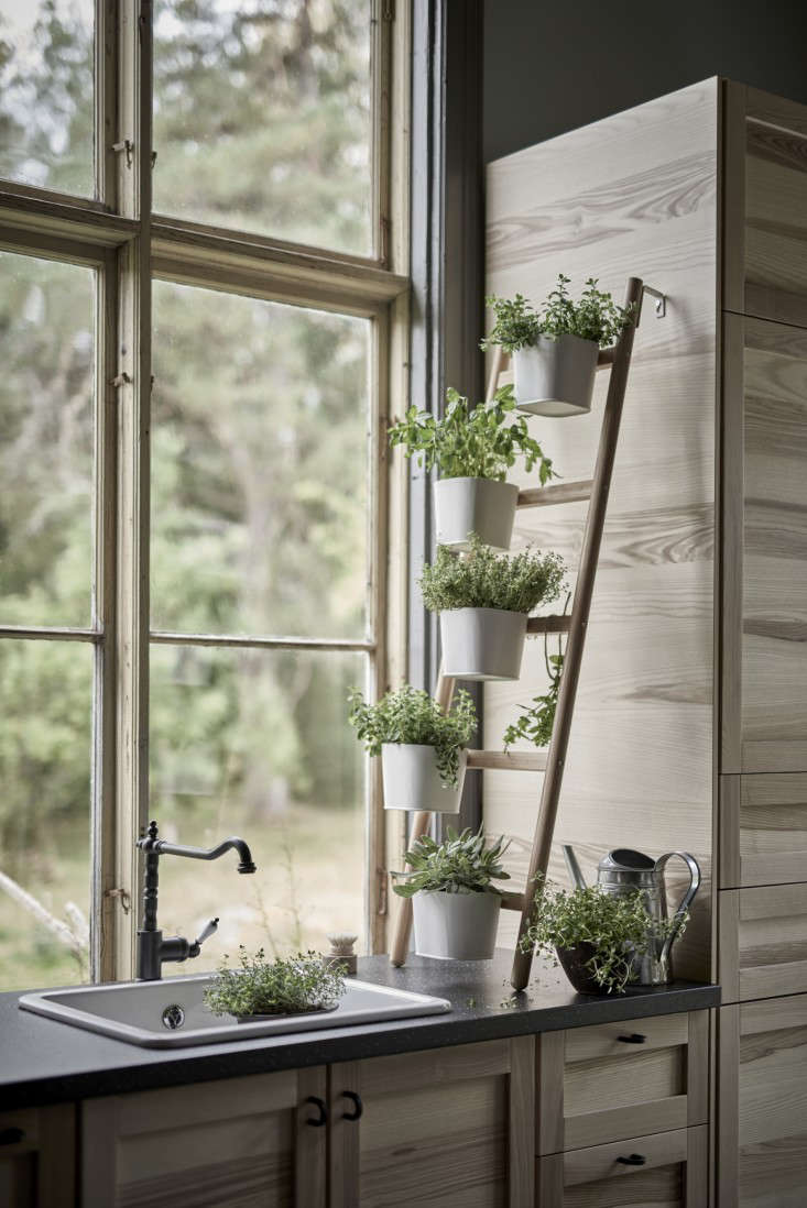 ikea-plant-stands-new-satsumas-2-gardenista