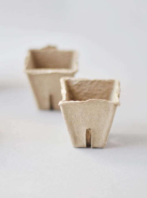 peat-pots-for-seedlings-gardenista