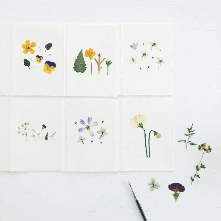pressed-floewr-cards-gardenista