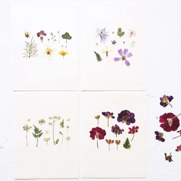 pressed-flower-artworks-1-mr-studio-london-gardenista