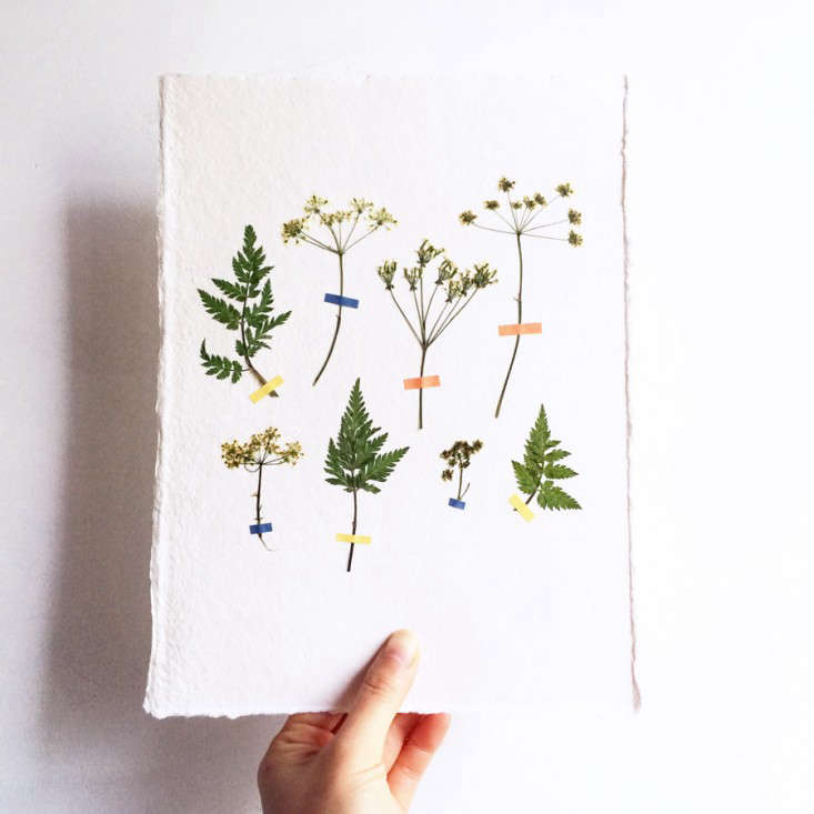 pressed-flower-artworks-8-mr-studio-london-gardenista