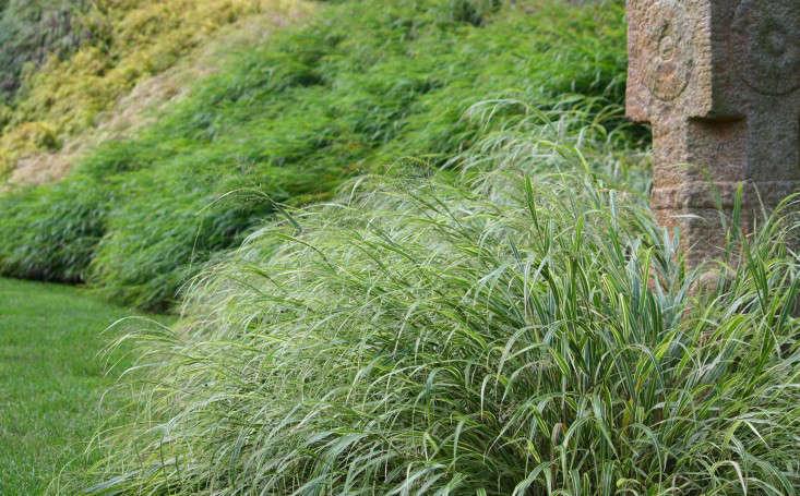 texture_marie viljoen_gardenista