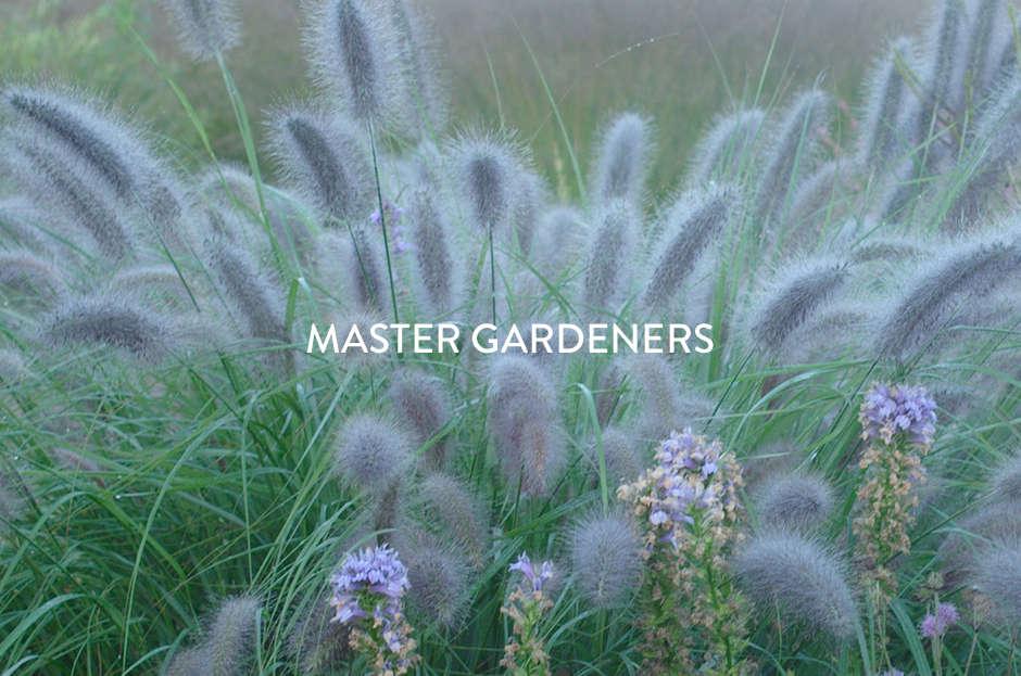 toc-master-gardeners-gardenista