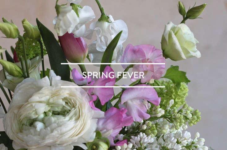 toc-spring-fever-2016-gardenista