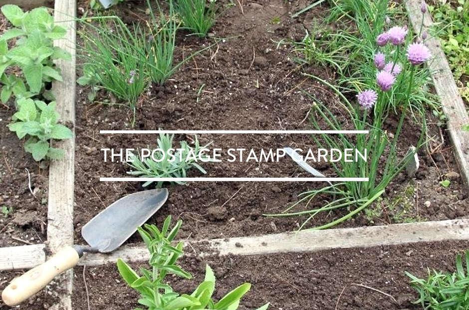 toc-the-postage-stamp-garden-gardenista-february-2016
