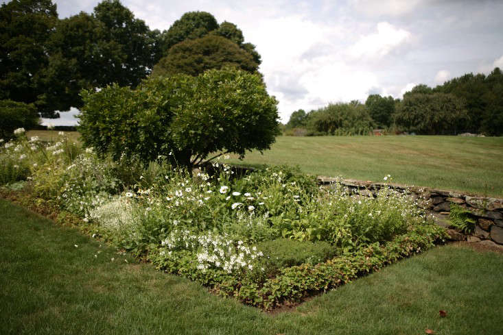 A trial bed at White Flower Farm.