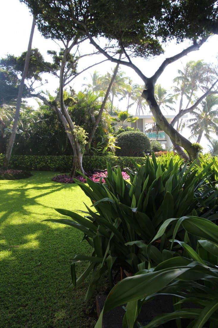 backyard-shangi-la-doris-duke-honolulu-gardenista