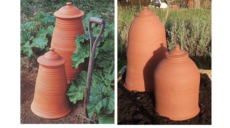 chimney-bell-rhubarb-forcers-gardenista