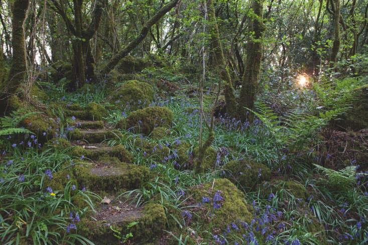 fixed-the-irish-garden-ireland-gardenista-LornaMacMahon_0043