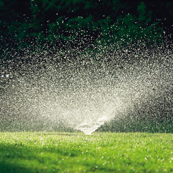 If you have live grass, a Brass Turned Sprinkler will spray water into the air in a circular pattern, &#8