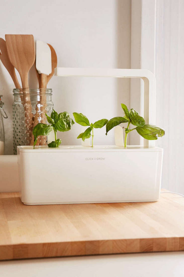 indoor-herb-garden-countertop-click-and-grow-gardenista