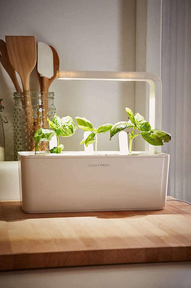 indoor-herb-garden-starter-kit-gardenista