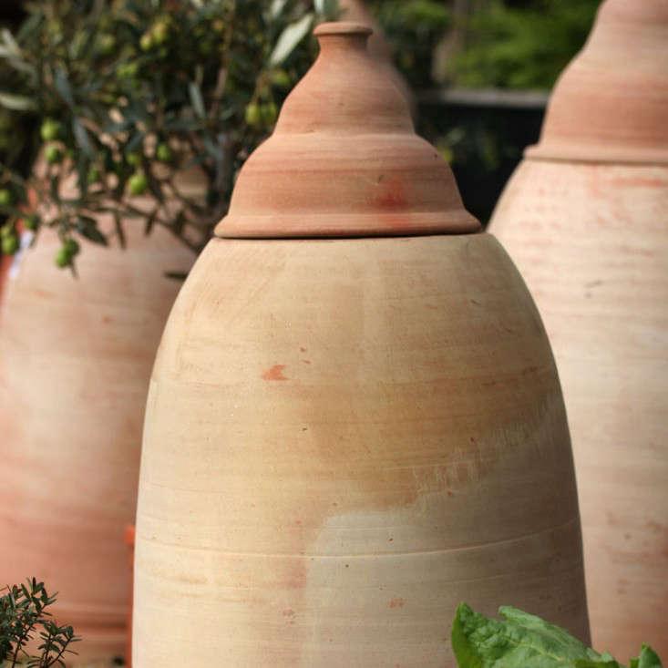 large-rhubarb-forcer-jar-gardenista
